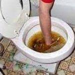 4 Dicas para Desentupir Vaso Sanitário!